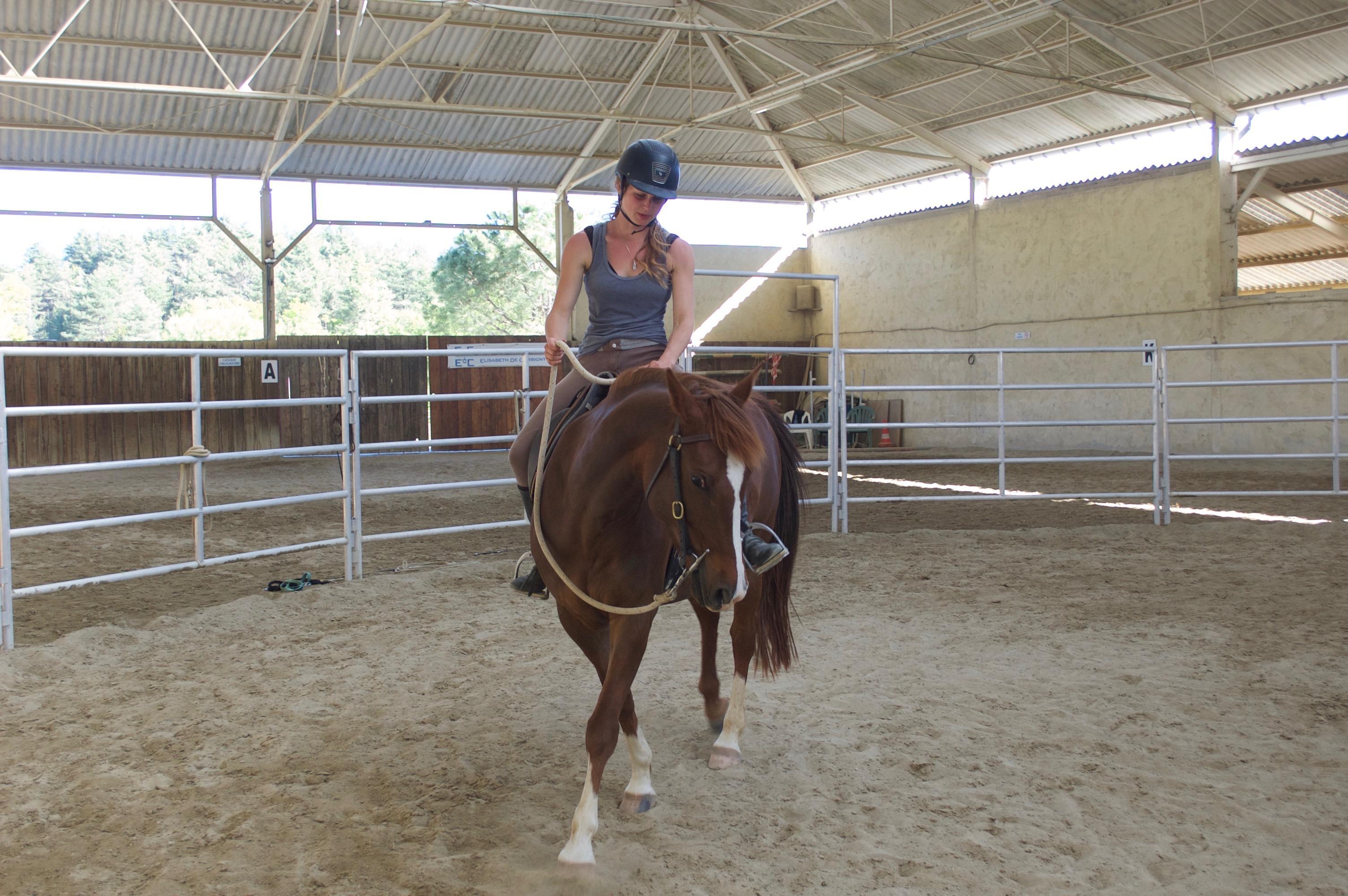 photo de Équitation éthologique – Julie Cramer