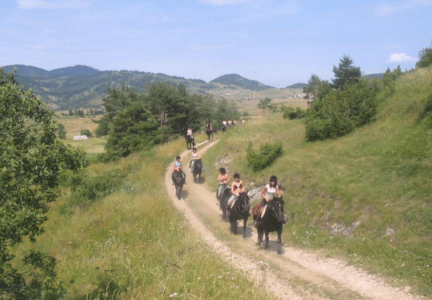 photo de L'Écrin des Cimes , équitation bienveillante